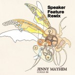 REMIX: Jenny Mayhem – Could Be